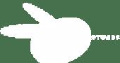 Netinsoft Logo
