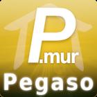 Pegaso240